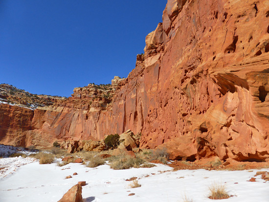 The high sandstone walls of Lower Muley Canyon reveal millions of years of geology